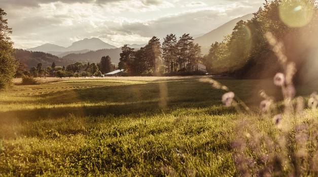 Energetsko polje Slovenije je trenutno polno žalosti, jeze, strahu in bolečine (foto: profimedia)